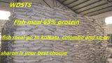 [أشفي] [فيش مل] لأنّ تغذية مع إرتفاع - بروتين