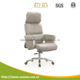 격렬한 행정상 의자 (A650)