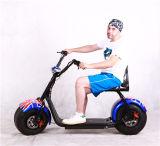 [60ف] [11ه] سمينة إطار العجلة جبل درّاجة كهربائيّة