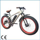 脂肪質のタイヤの李イオン電池(OKM-1315)が付いている電気自転車のバイク