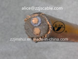 0.6/1kv cable redondo concéntrico del cable 2*6AWG+6AWG Copper/XLPE/PVC