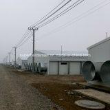 Costruzione dell'azienda agricola di pollo della struttura d'acciaio con l'attrezzatura di produzione