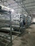 Автоматическая клетка цыпленка курочки рамки с сертификатом ISO9001