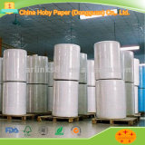 Speicherplotter-Papier-Rolle gebildet in Guangdong