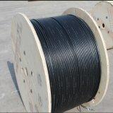 Un cavo di fibra ottica di 48 memorie con nastro adesivo d'acciaio ondulato