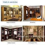 Hotel와 Home를 위한 옷장 Closet