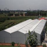 Construction fabriquée légère d'entrepôt de structure métallique de Peb avec le coût bas