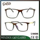 Optische Frame van het Oogglas Eyewear van Ultem van het Ontwerp van de manier het Plastic met de Tempel van het Aluminium E053
