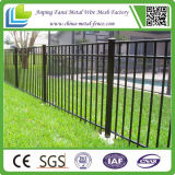 Powder negro Coated Ornamental Iron Picket Fence para América