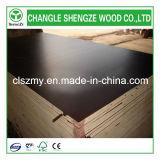 A película de Shandong Changle enfrentou a madeira compensada