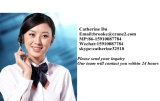 Élévateur de construction de Shandong Mingwei/élévateur de construction avec du ce et l'ISO9001 (SC200/200) -2t