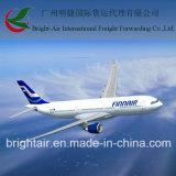 ベルギーへの貨物Forwarder From中国広州Mainland
