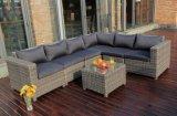Мебель ротанга напольного секционного PE мебели Wicker