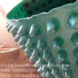 Membrana da drenagem com protuberâncias