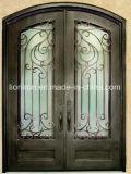 贅沢な振動開いた錬鉄の出入口の機密保護のドア