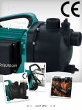 (SDP600-2)庭の地上水ポンプ遠心ポンプ高圧熱い夏ポンプ