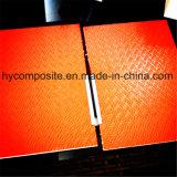 Panneau antidérapant de nid d'abeilles de la fibre de verre pp pour l'échafaudage Walkplatform