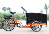 貨物のための3つの車輪が付いている電気自転車
