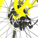 أنثى سمين إطار درّاجة كهربائيّة حارّ يبيع ([رسب-506])