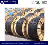 ADSS Cable de fibra óptica, todo el dieléctrico autosuficiente, hilos de Armid