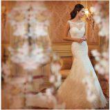 Robe de mariage nuptiale de bal d'étudiants de soirée de promotion de 75 USD/PCS (ALSW001)