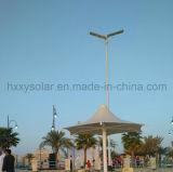 réverbère solaire de jardin de 15W Hxxy avec 3 ans de garantie