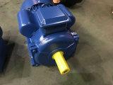 Motor assíncrono monofásico de Yc 132m-4 (7.5KW/10HP)