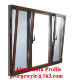 Sections personnalisées par extrusion en aluminium en aluminium de profil de construction