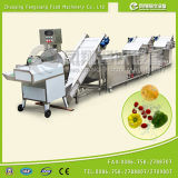 Épinards, Leek, Celery Cutting et Washing Line
