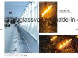5ml het amberFlesje van het Glas