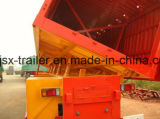 тележка трейлера Tipper Axle трейлера 3 сброса 45m3 для угля