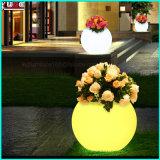 Iluminar acima bandejas por atacado plásticas dos potenciômetros de flor do potenciômetro de flor