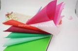 Fornecedor não tecido colorido Girar-Ligado da tela de 100% PP