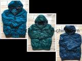 在庫か点Jacktesの人のためのライトダウンジャケット、卸売のより安い価格の衣服