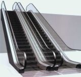 Escalator public de balustrade de convoyeur de passager de trafic