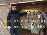 Cummins Engine Nta855-C310 Nta855-C335 Nta855-C360 Nta855-C420