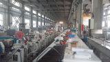 De Automatische Machine van uitstekende kwaliteit van de Verpakking van het Hoofdkussen van Noedels met Drie Wegers