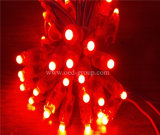 中国の製造者からの高品質F5 LED DC5V 9mm LEDピクセルライト