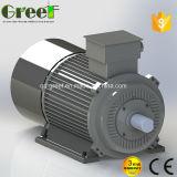 generatore a magnete permanente basso di 10kw 100kw RPM per la turbina di vento