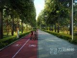 Immagini verdi della rappresentazione di Pespective della strada con il processo perfetto
