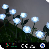 공장 도매 LED 로즈 빛