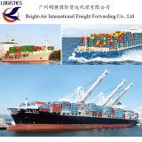 A melhor carga avalia o transporte global do mar do remetente de frete de China a Katowice Poland