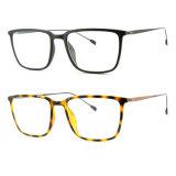 Het populaire Frame Eyewear van Ultem van de Manier Plastic Optische met Slank Roestvrij staal 7309