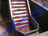 Máquina de processamento de molho de tomate em aço inox completo / Maquinário de processamento de molho