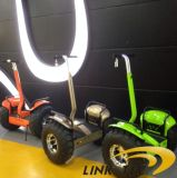 Style libre Two Wheel Golf Scooter avec New Technology