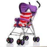 2017 neue helle Baby-Spaziergänger-Hersteller Wholesale