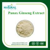 Ginseng P.E. 7% des Fabrik-Zubehör-Puder-Panax-Ginseng-Auszug-7%/Panax