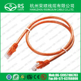 Câble LAN de réseau de cordon de connexion de RJ45 de CAT6 UTP/FTP/SFTP