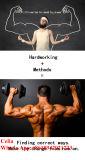Injizierbares SpitzenTrenbolone Enanthate/Tren E Puder für Muskel-Wachstum