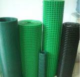 Treillis métallique soudé enduit par PVC (WM-5)